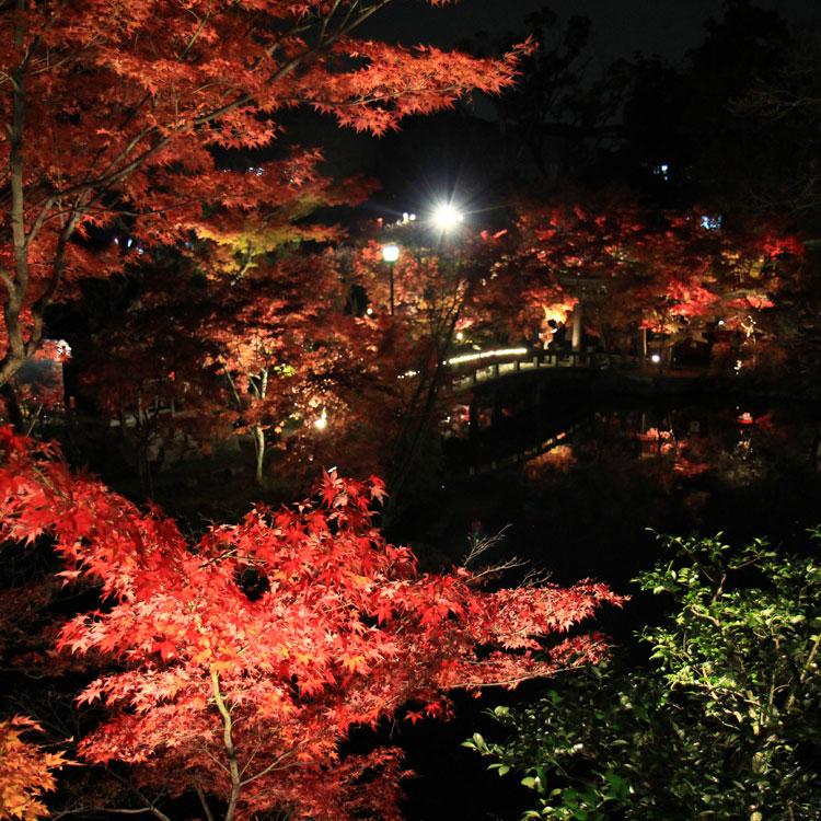 京都観光 秋のおすすめ紅葉スポット その3