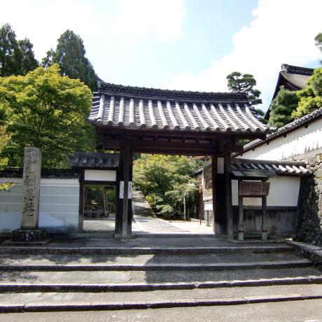 京都観光 「そうだ京都、行こう。」秋の京都は一休寺